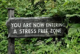 stress free 2